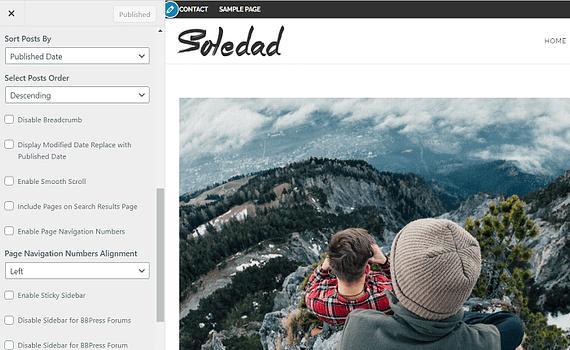 Soledad-theme-settings